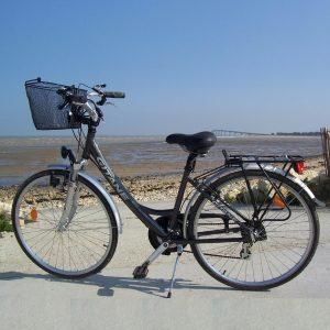 VTC_Fun Cycles_Rivedoux